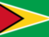Advising DFID on environmental health investment strategy in Guyana (2000-01)