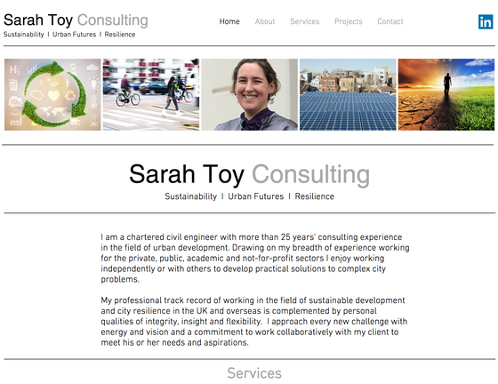 Consultancy Website