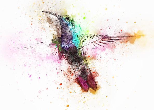 bird-2622395_1280.jpg