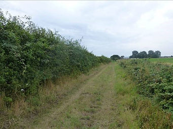 4.  Looking back along the green lane to