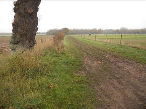 1. The path leaves Rollesby Road.jpg