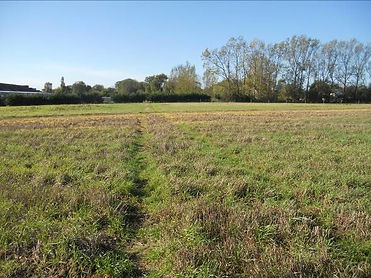 2.  The path crosses a cropped field.jpg