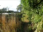 7  The path reaches a market garden.jpg