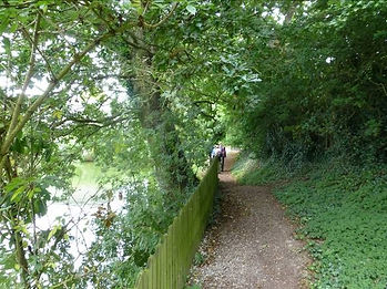 5. Looking back from where the footpath
