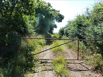 1.  The beginning of Mill Lane at Somert