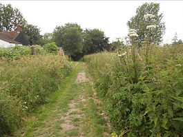 FP2 6 The green lane where it reaches th