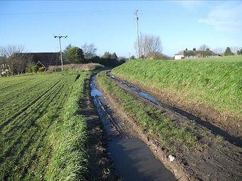 2.  The path follows the green lane towa