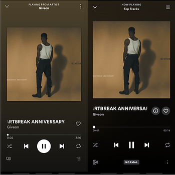 Music PLayer SpotifyTIDAL