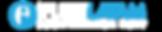 Logo-FLEETLATAM-CONF-2019[2].png