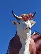 Bull with Easter bonnet 2018.JPG
