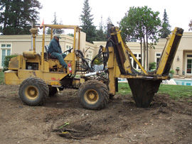 Trusted Tree Planting Solutions in Mountain View, CA