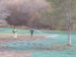 Hydroseeding Grass Installation in Mountain View, CA
