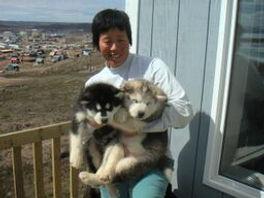Er with Adam&Lewis pups.jpeg