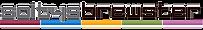 SB logo_edited.png
