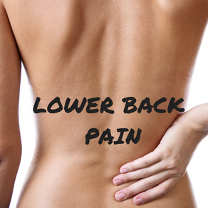 The anatomy of lower back pain