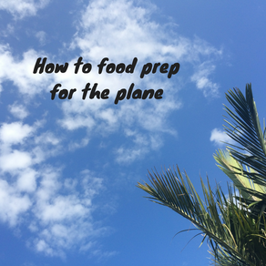 How to food prep for the plane
