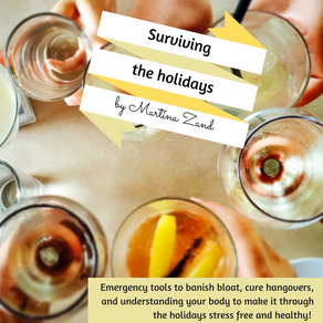 The Holiday survival guide is here!