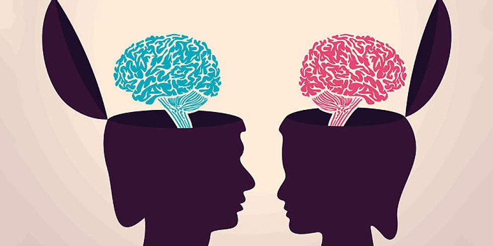 Blue brain Pink Brain: gender, brain and relationships