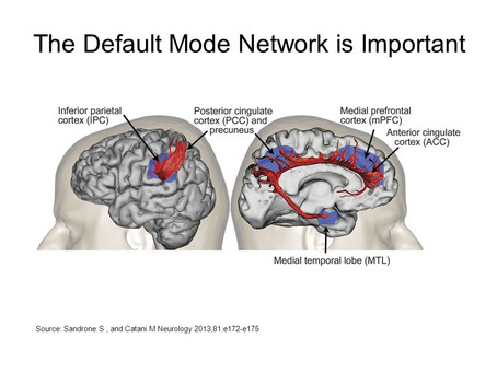 The Default Mode Network (DMN) and training its abilities in the brain