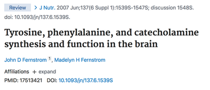 Tyrosine, phenylalanine, and catecholamine synthesis and function in the brain