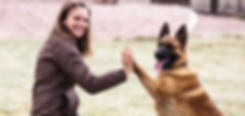 Private Pet Dog Training Classes