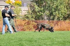 Patrol Dog Tracking