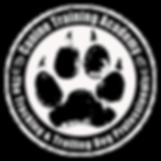 Canine Training Academy professional Bloodhound training man trailing  & Tracking dog training