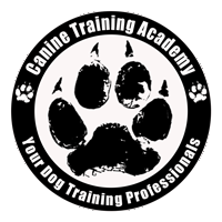 CTA_logo_paw_pet-classes.png