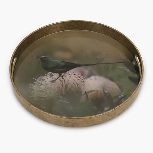 Medium Bird Tray