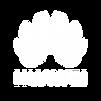 bravotech_icons-7.png