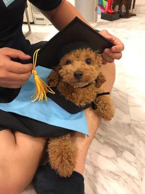 Beann Graduation