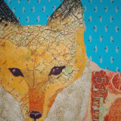 Fox close up