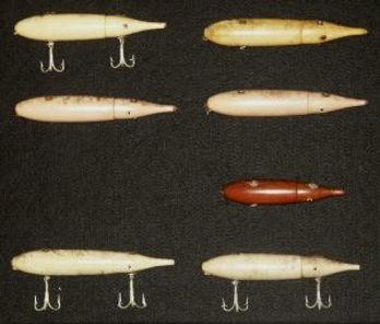 squid4.jpg