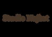 SN_logo-01.png