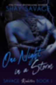 OneNightBook1Ebook.JPG