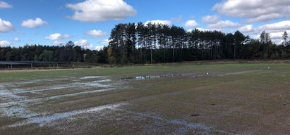 Field 3 - Grass coming in