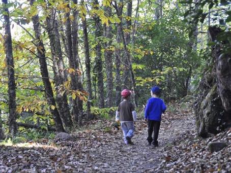 El trío perfecto: Niños, naturaleza y nuestras minicaravanas Caretta