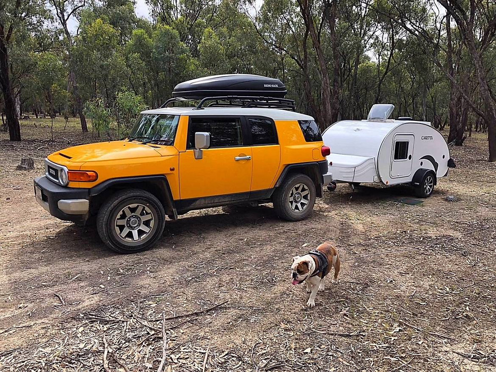 Caravana Caretta vijar con perros
