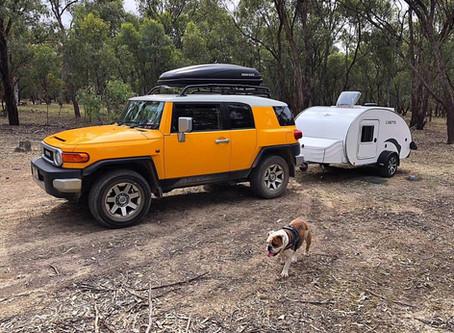 Viajar en Minicaravana con tu perro o gato