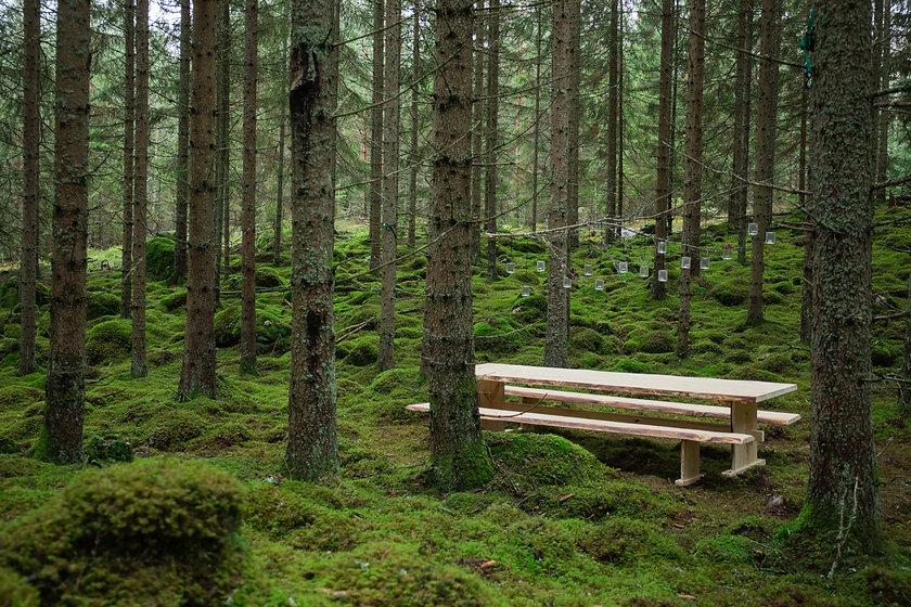 Table_Småland. Photo by August Dellert.jpg