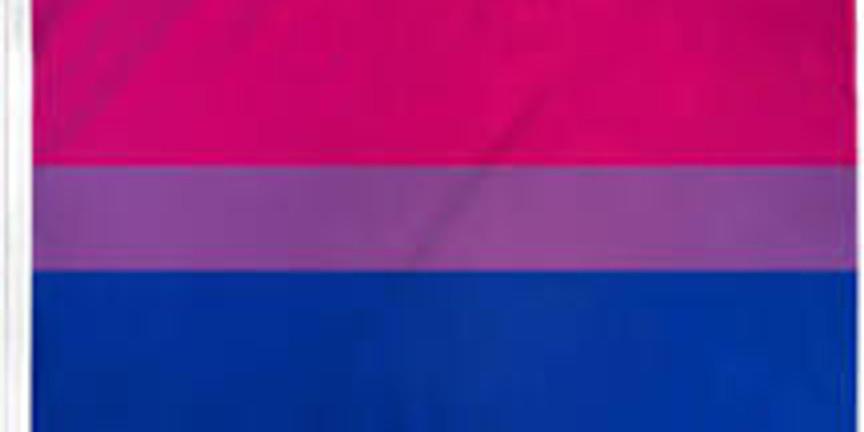 Bisexual+ Youth: Challenging Stigma and Reducing Disparities Webinar