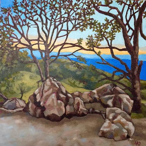 Atop of Figueroa Mountain
