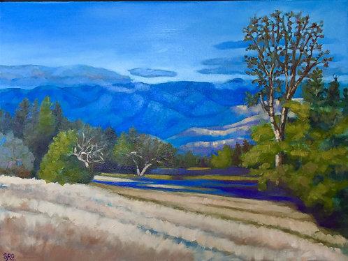 Figueroa Mountain Vista