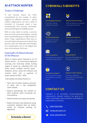 Cybowall Brochure V3 -02.png