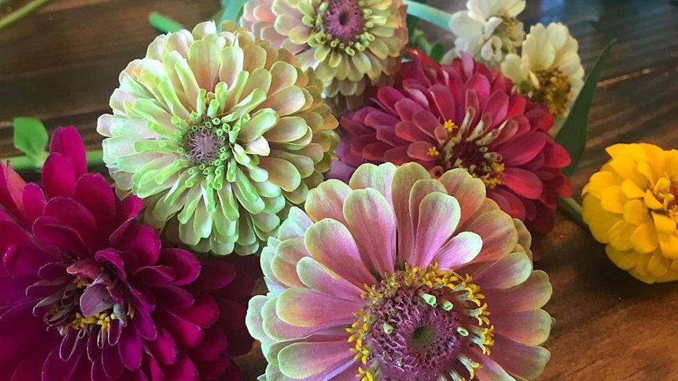 Bloom Bunch Summer Subscription