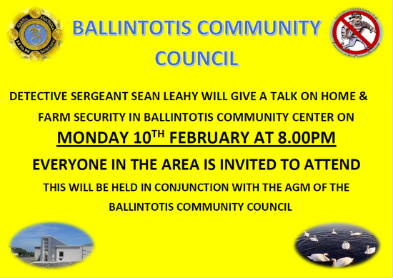 Ballintotis Community Council