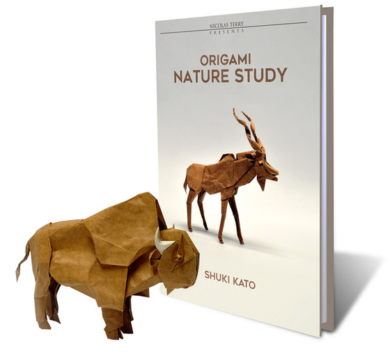 New Book: Origami Nature Study