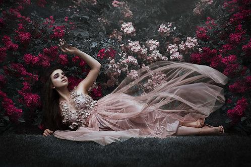Une rose pâle 60 x 40