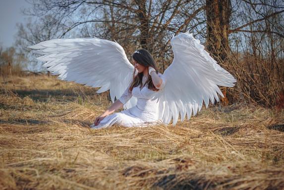 Ailes d'anges pliables
