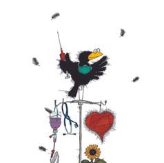 Corvus Sanitas